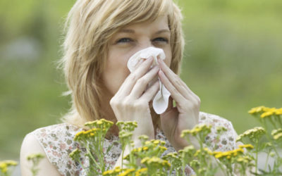 So entsteht eine chronische Sinusitis